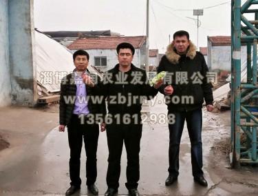 张总与哈萨克斯坦技术人员进棚区参观留念